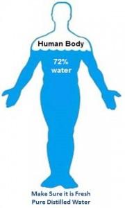 Human Body 70 Water
