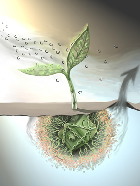CO2 Emission causing more contamination to water and soil especially to farmers