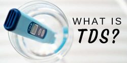 What is TDS